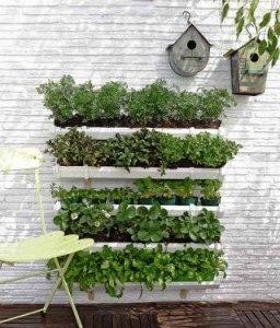 Вертикальний сад з водостічних жолобів